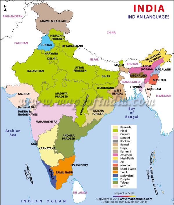 linguistic history on punjabi family